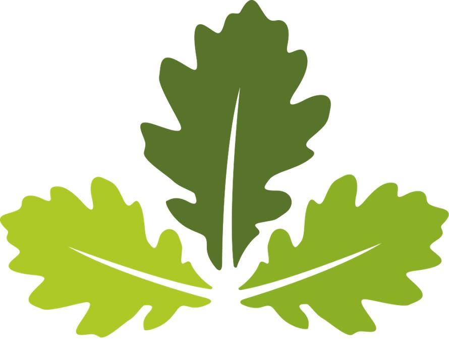BHT oak leaves